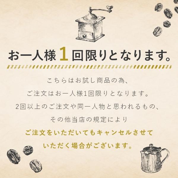 【送料無料】WEB限定お試しセット