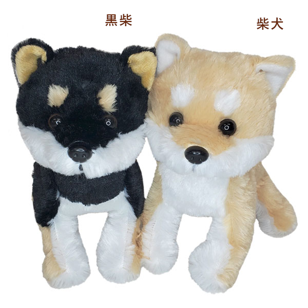 【バラ出荷65%】プレミアムパピー 柴犬