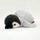 【4月頃再入荷予定】ワイルドアニマル ペンケース ペンギン 2個 / ロット