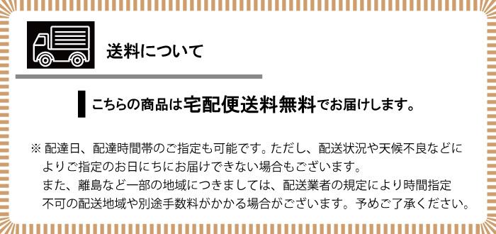 綿テンセル サッカー ワイドストライプ チュニックシャツ レディース ベージュ(ストライプ)  日本製 blissful/ブリスフル