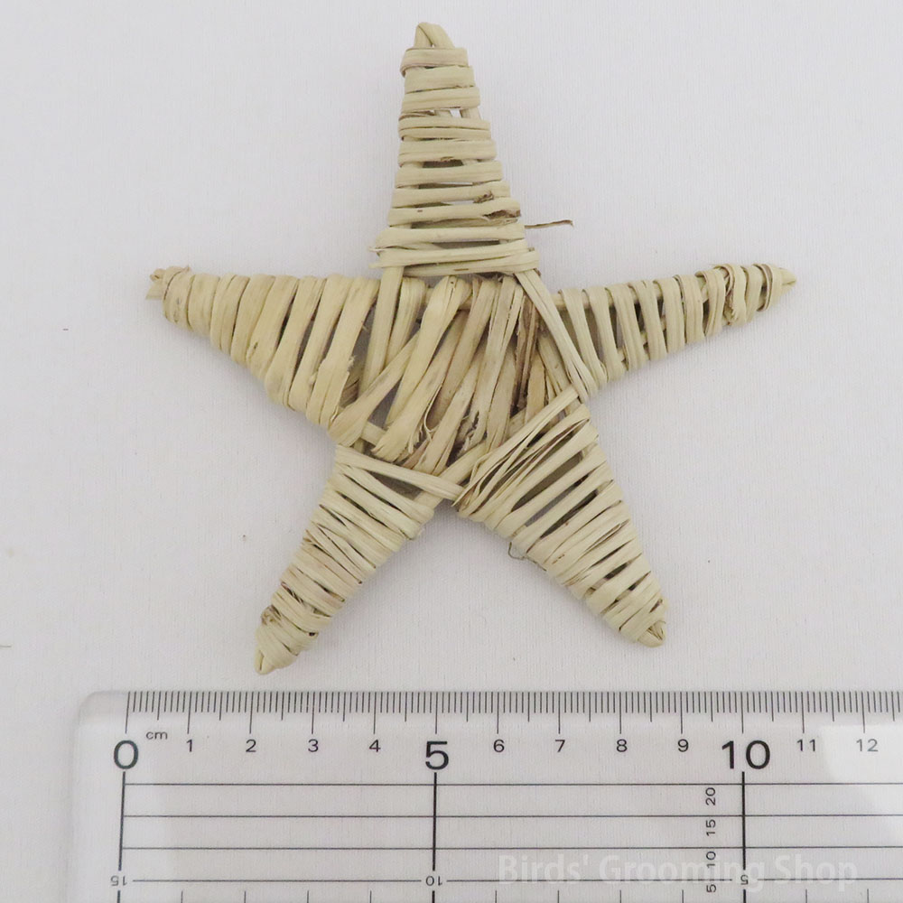 特大スターマンチ(長さ約10cm)