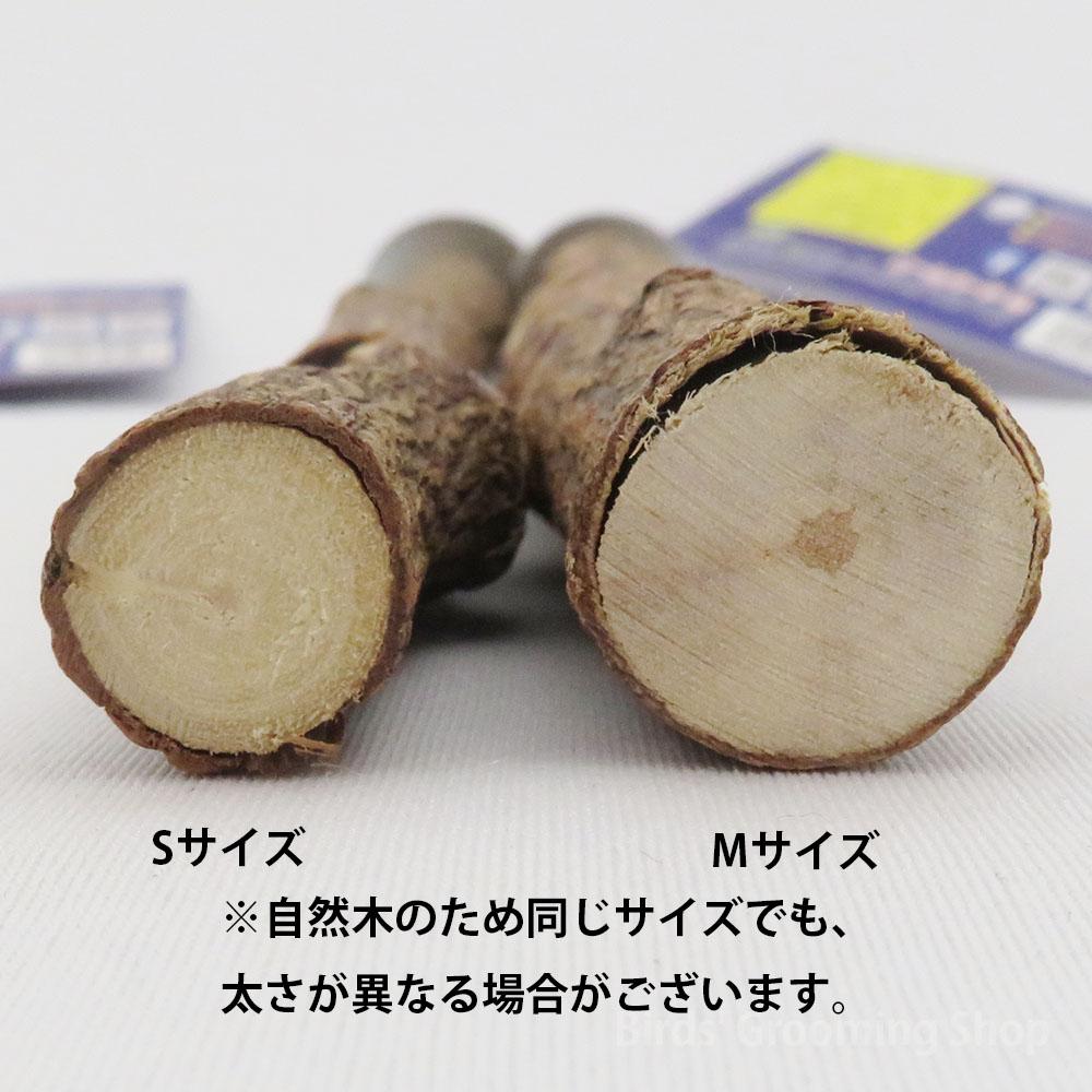 【KAWAI】森のお医者さん ニームパーチ(Sサイズ)[直径約15mm/長さ約280mm]