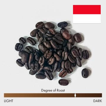 インドネシア アチェ アルールバダ 中深煎り コーヒー豆 100g