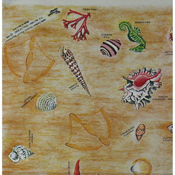 THE PRINTED IMAGE/プリンテッドイメージ ネイチャーファクトバンダナ|SEASHELLS