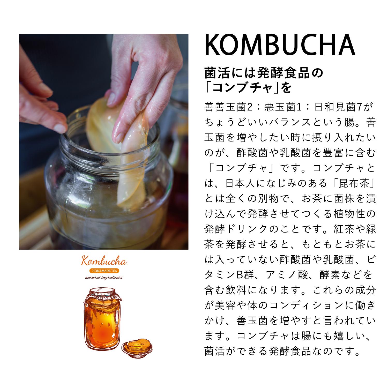 2.   麻炭ジンジャーショット 【30ml×6本】  コンブチャ配合 チャコールクレンズ ドリンク