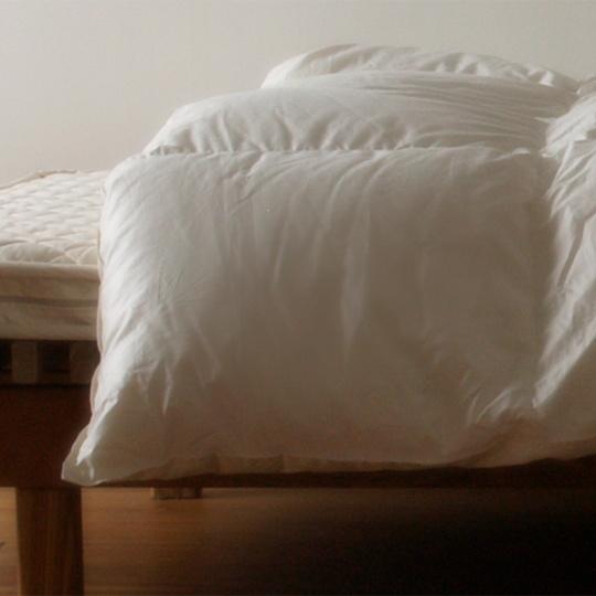 ハンガリーホワイトマザーグースダウン93%×100サテン羽毛布団・本掛け クイーン