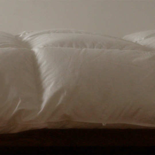 ハンガリーホワイトマザーグースダウン93%×100サテン羽毛布団・本掛け ダブル