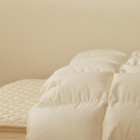 ポーランドオーガニックホワイトマザーグースダウン95%×テンセル羽毛布団・本掛け クイーン