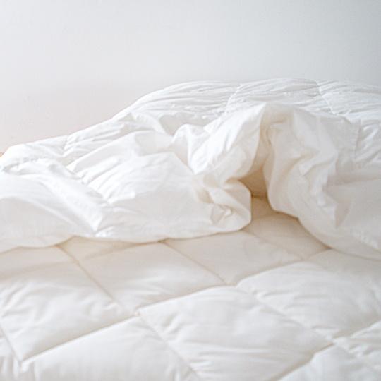 ポーランドオーガニックホワイトマザーグースダウン95%×テンセル羽毛布団・肌掛け ダブル