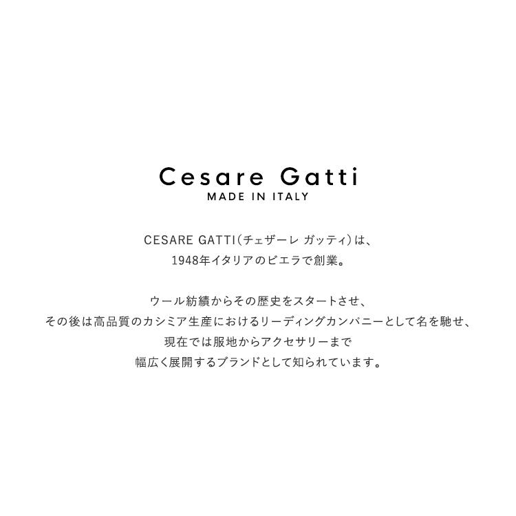Cesare Gatti(チェザーレガッティ)/CHECK STOLE チェックストール【2020秋冬】