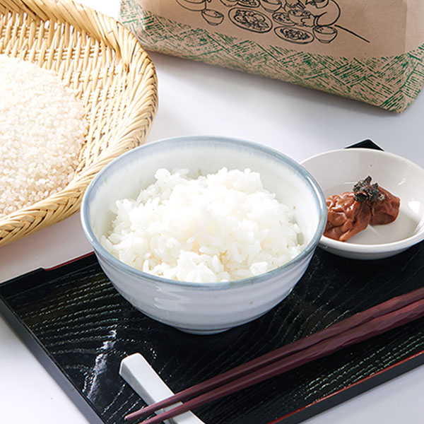 【5kg・栽培期間中農薬不使用米】おぼろづき・白米
