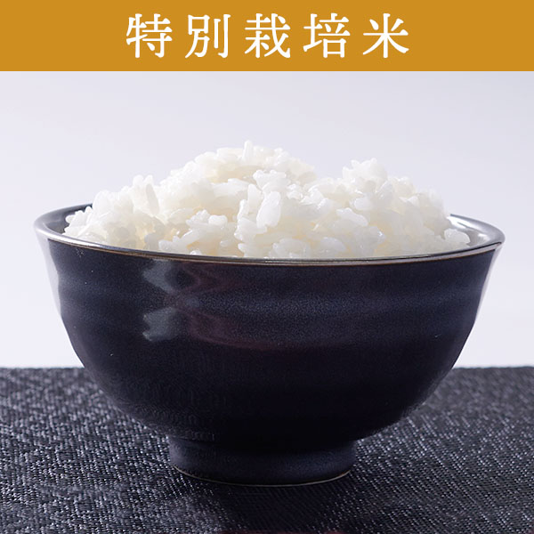 【5kg・特別栽培米】ななつぼし・白米