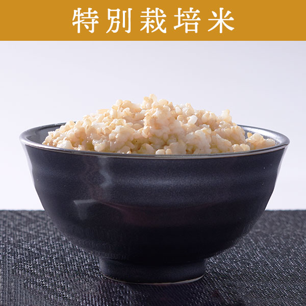【5kg・特別栽培米】ななつぼし・玄米