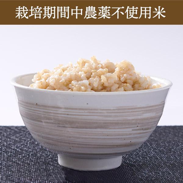 【10kg・栽培期間中農薬不使用米】ゆめぴりか・玄米