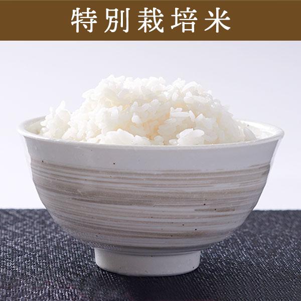 【10kg・特別栽培米】ゆめぴりか・白米