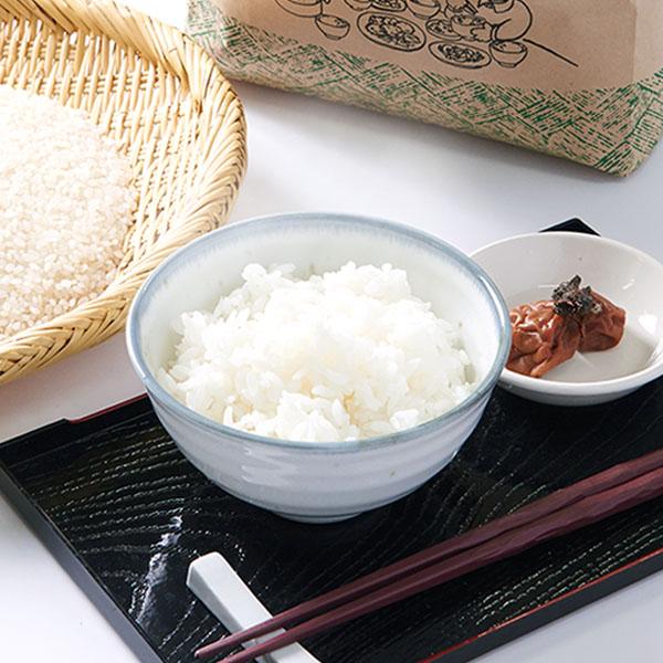 【10kg・栽培期間中農薬不使用米】おぼろづき・白米