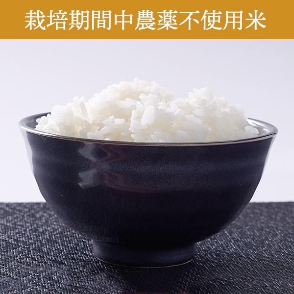 【10kg・栽培期間中農薬不使用米】ななつぼし・白米