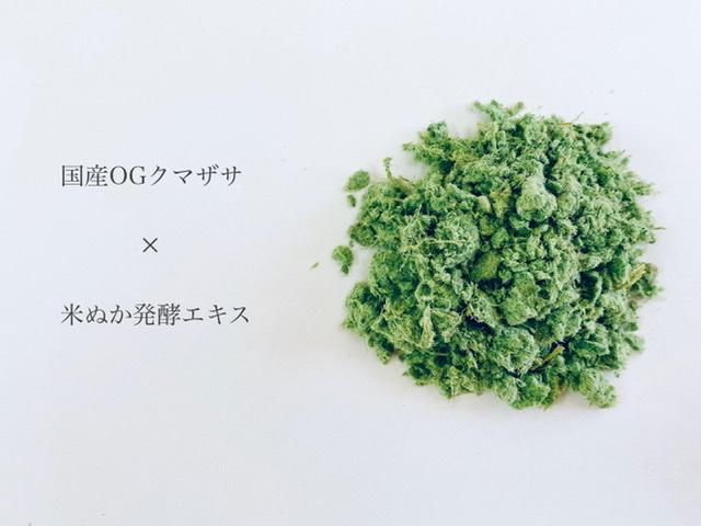 【発酵】クマザサ