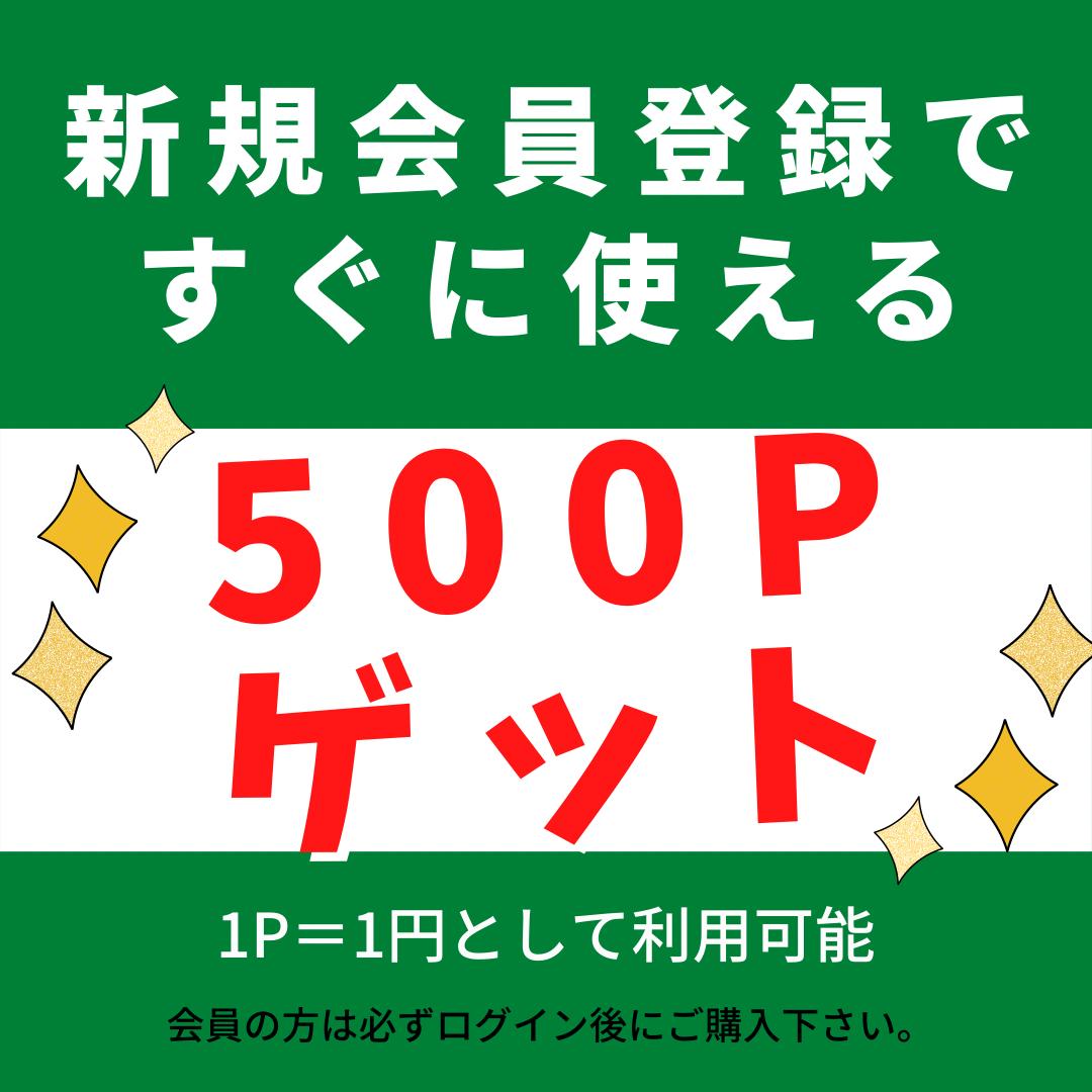 送料無料!!マトンビリヤニ10個パック