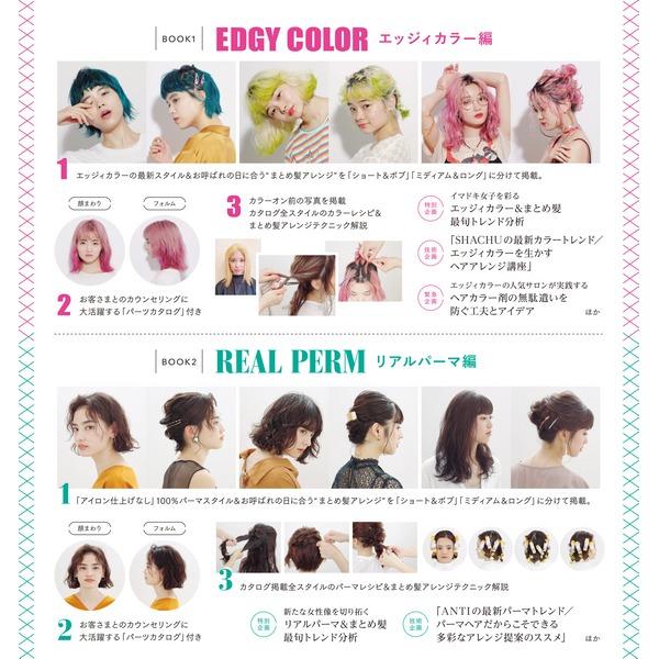 エッジィカラー&リアルパーマのまとめ髪BOOK -単行本-