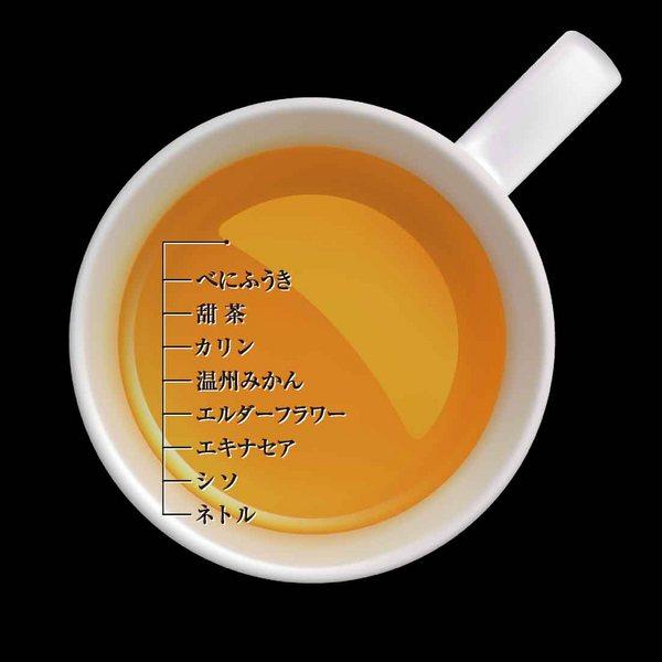 エステプロラボ ゼロ-カフェイン ハーブティー プロ 10包