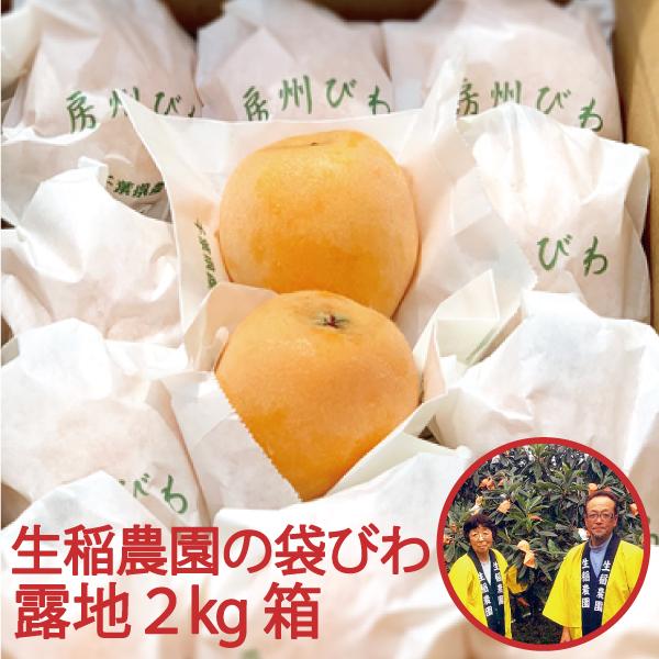 【数量限定】生稲農園の袋びわ(露地)2kg箱