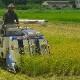 【蛍まい研究会】<br>千葉県産 低農薬栽培コシヒカリ5kg×2袋