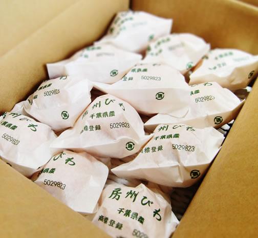 【数量限定】七兵衛の袋びわ<br>露地[大房種] 2L(または3L)1箱