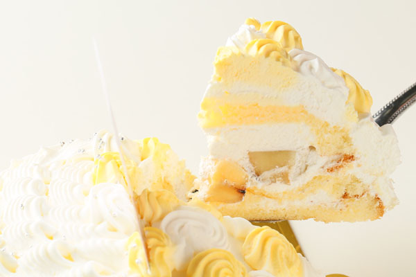 ドールケーキ 6号