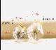 ペットの毛【K18YG&スワロフスキー】メモリアル ディアナゴールド イエローゴールド タイプB(大)