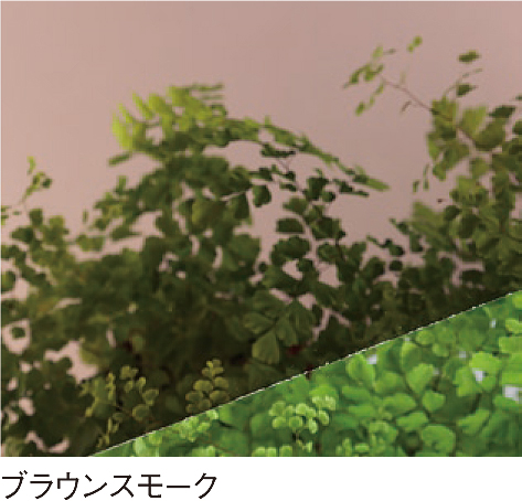 PCSPR-994T 2mm厚 ブラウンスモーク 耐候(両面)熱線カットグレード ポリカ平板 タキロンシーアイ