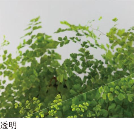 PC-1600 2mm厚 透明 一般グレード ポリカ平板 タキロンシーアイ