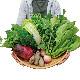 おまかせ野菜 おすそわけセット (1〜2人用) 【月2回 ・ 送料込 (北海道・沖縄・一部離島は別途500円)】 【ミモレ農園マルシェ】