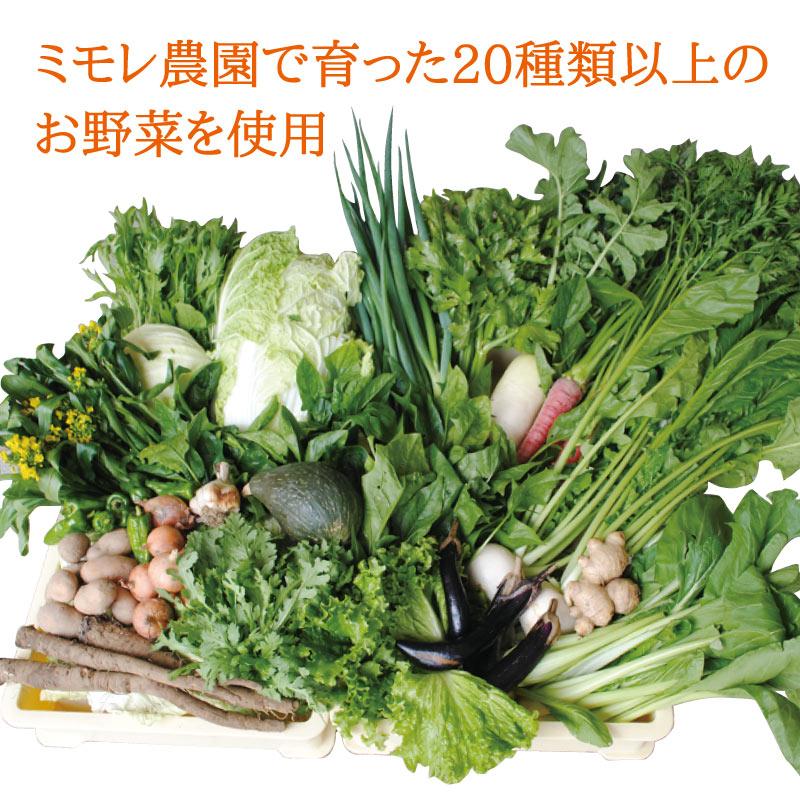 お野菜を食べるスープ 20種類以上の 「お野菜ブイヨンスープ」 200g 【ミモレ農園マルシェ】