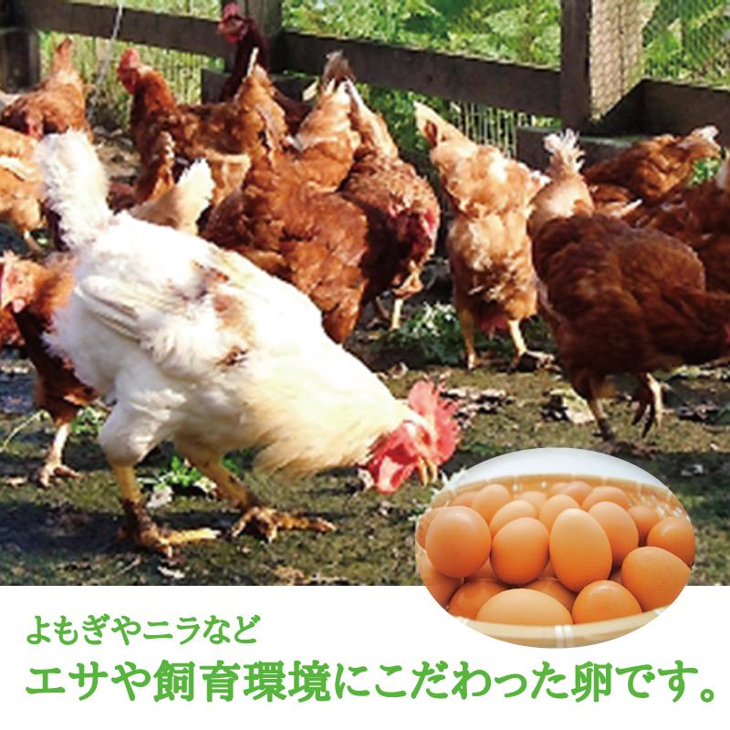 半熟仕立ての 温泉たまご 10個入り1パック 【ミモレ農園マルシェ】