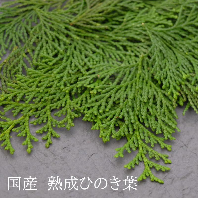 【お徳用】 ひのき珈琲 1L