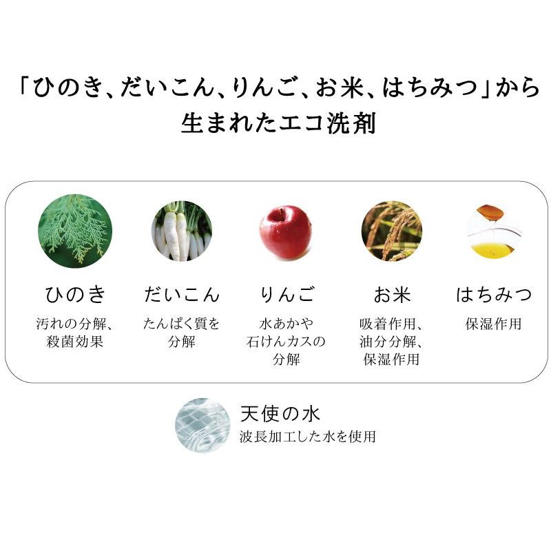 エコ洗剤 チャレンジe 台所用 本体 300ml