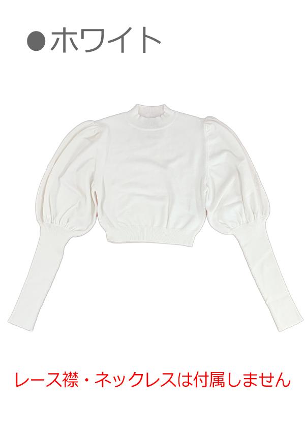 [残り4点]袖コンシャスレースONニットトップス-全1色-