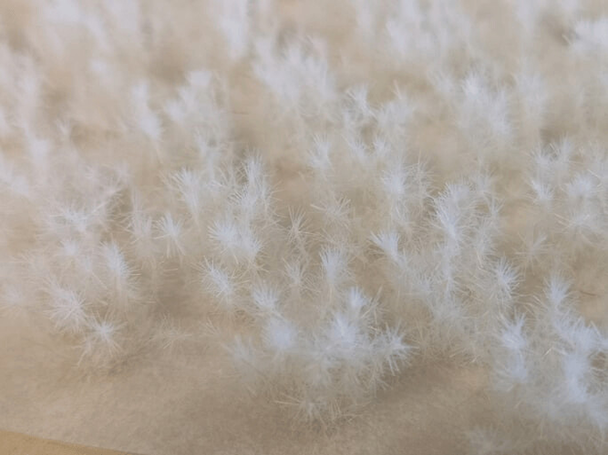 Snow 12mm  - Small Thistle Tufts