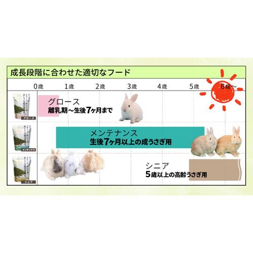 【期間限定スペシャルキャンペーン】【1個ご購入でもう1個プレゼント!】牧草市場 スーパーラビットフード シニア 1.0kg+1.0kg