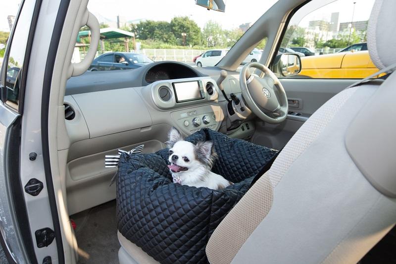 【再販☆人気】キルティング ドライブボックスベッド