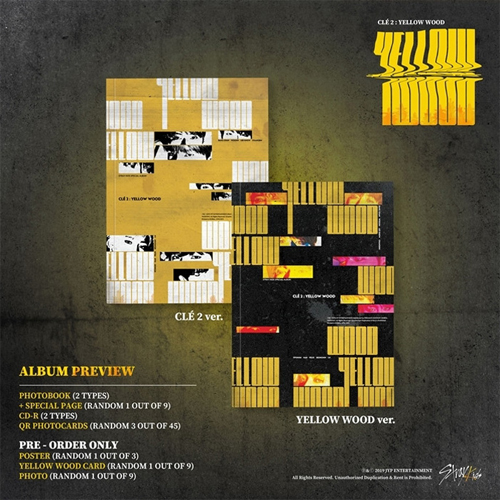 【STRAY KIDS】CLE 2 : YELLOW WOOD ★LIMITED MINI ALBUM【輸入盤】バージョン・ランダム発送/選択不可