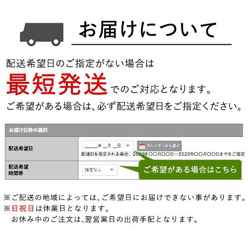ギフトセット10個入り(ZVTM-B)