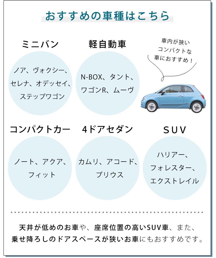 Maxi-Cosi マキシコシ アクシスフィックス プラス / オーセンティック ブラック
