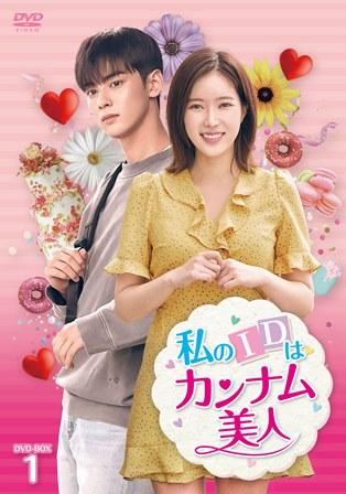 私のIDはカンナム美人 DVD-BOX1 【通常盤】