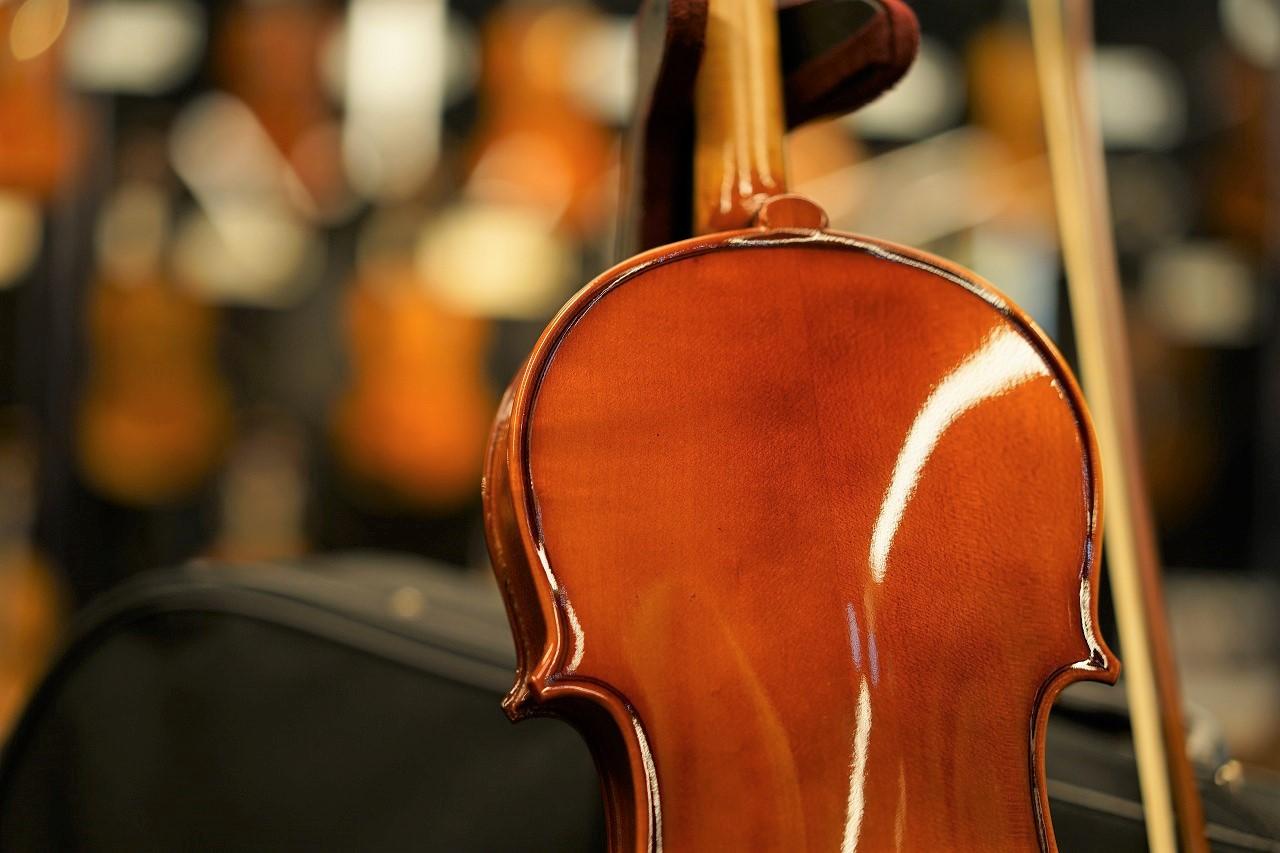 初心者向け入門バイオリンVS-1 特別セット