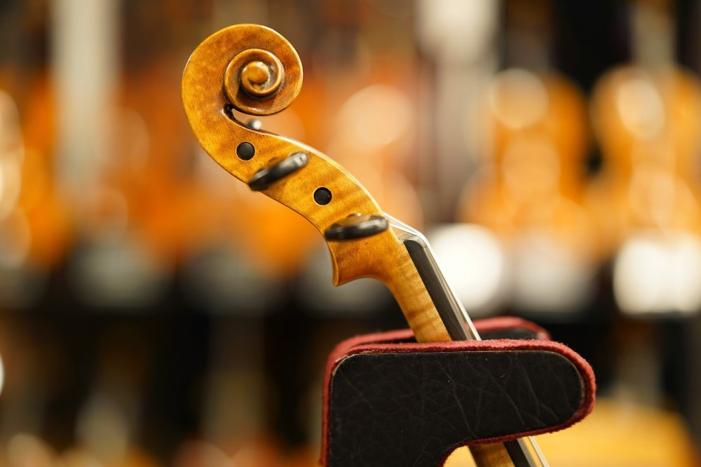 バイオリン【Roderich Paesold(ローデリッヒ・ペソルド) PA805J】BSフジ限定セット