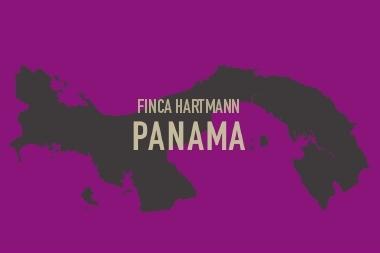 パナマ Hartmann ミディアムロースト (100g〜300g)