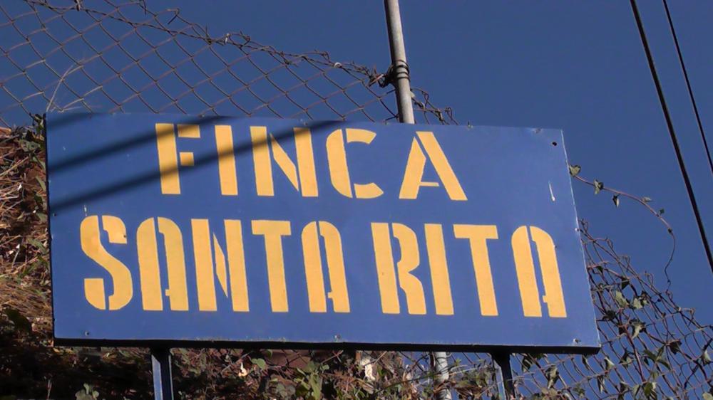エルサルバドル Santa RIta シティロースト (100g〜300g)