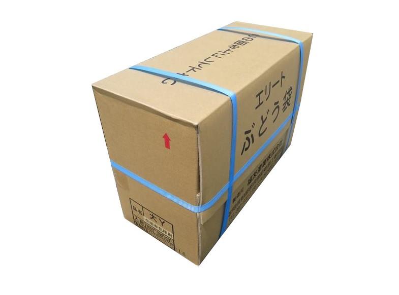 エリート 大赤 Y止付(緑ぶどう)205×295mm 3000枚/箱